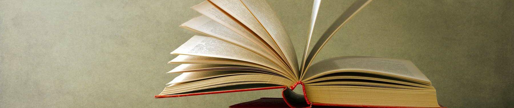 Aufgeschlagenes Buch als Motto-Bild für Buchbesprechungen der Berliner Paartherapeutin Julia Bellabarba