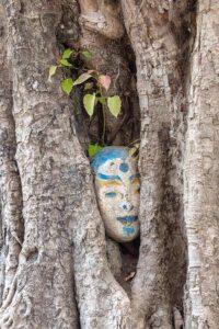 Baumstamm mit eingewachsener Skulptur eines menschlichen Kopfes