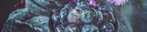 """Motto-Bild mit Blaubeeren zur Illustration der Rubrik """"Aktuelles"""" auf dem Blog der Berliner Paartherapeutin Julia Bellabarba"""